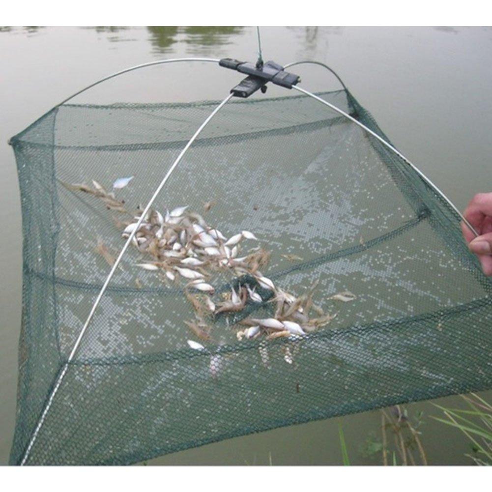 Hinmay Fishing Net, Folding Fish Shrimp Minnow Crab Baits Cast Mesh Trap Fishing Pot Trap