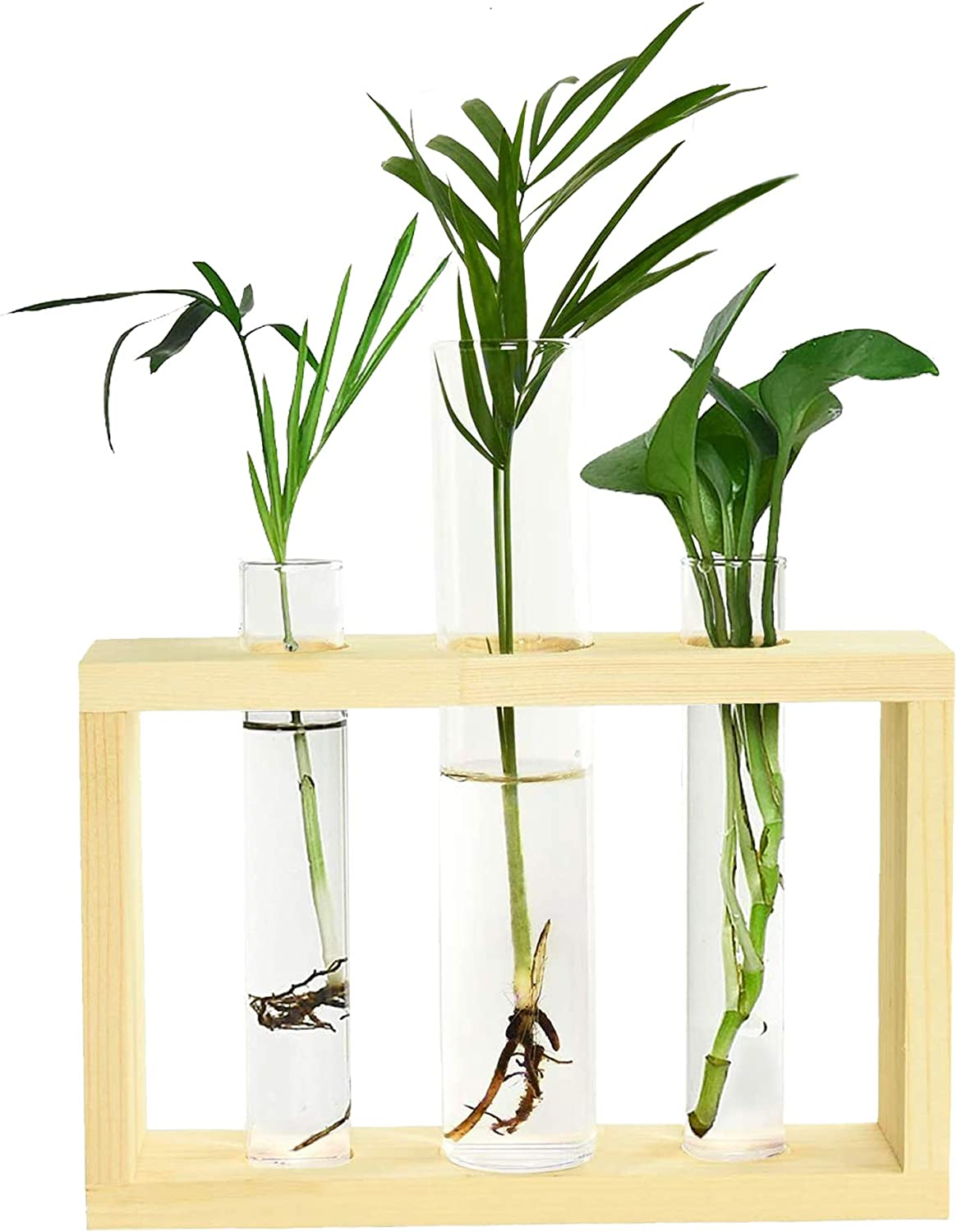 Fciqven Test Tube Planter with Wooden Stand, Glass Planter Propagation Station Test Tube Vase Flower Pots for Hydroponic Plants Home Garden Decoration (3 Test Tube)