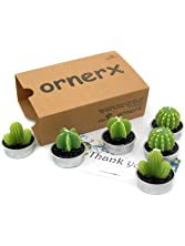 Ornerx Decorative Cactus Candles Tea Light Candles for Home Decor Christmas Gifts 6 Pcs