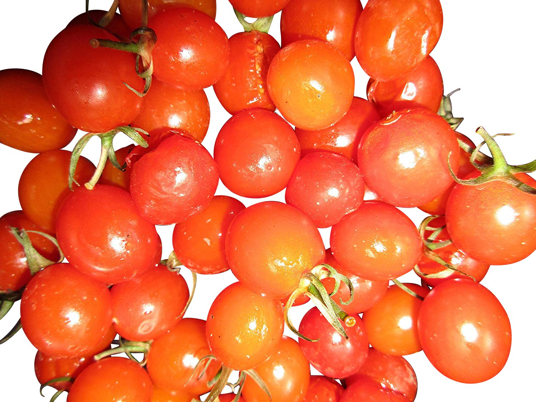 Hängetomate mehrtriebig 10 Samen Ampeltomate Small Egg