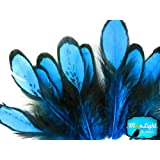 Moonlight Feather, Blue Laced Hen Feathers for Crafting 12 feathers/bag