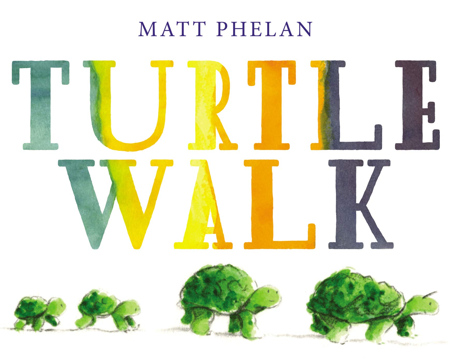 Turtle Walk: Phelan, Matt, Phelan, Matt: 9780062934130: Amazon.com: Books