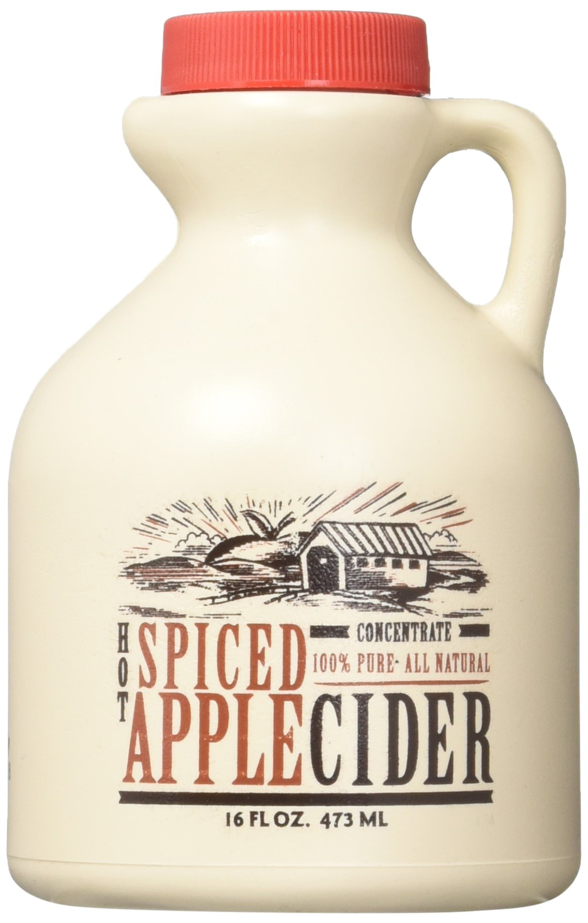 Mountain Cider Company Hot Spiced Apple Concentrate - 16 Ounces