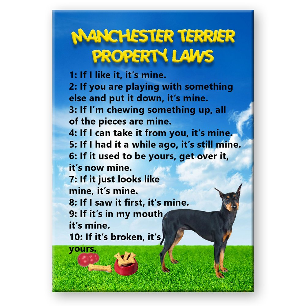 Manchester Terrier Property Laws Fridge Magnet