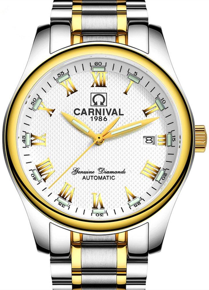 Men's Rome Numeral Calendar Automatic Mechanical Watch Tritium Gas Super Bright Luminous Blue Light (Gold White)