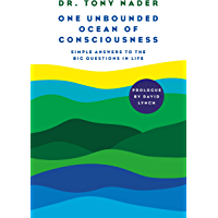 One unbounded ocean of consciousness: Simple answers to the big questions in life (English Edition)