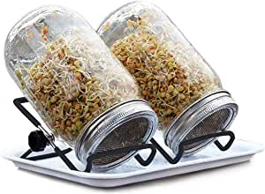 2 Pack Black Sprouting Jar Stand Stainless Steel Sprouting Stands Kit Foldable and Non-Slip Scaffolds for Mason Jar and Phone iPad Tablet (2pcs L)