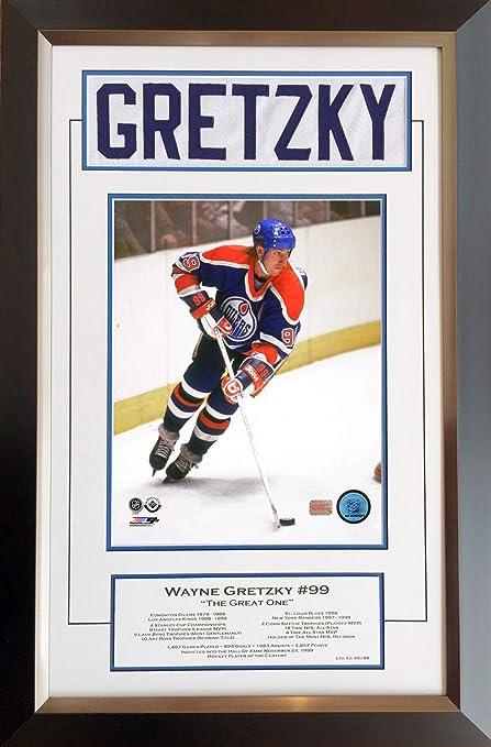 ee233f43519 Wayne Gretzky Career Collectible White Namebar Ltd Ed #88/99 - Museum Framed