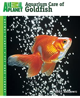 The Truth About Goldfish: Discover the Answers to Goldfish