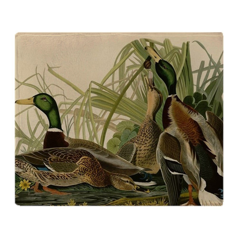 CafePress – Mallard Duck Audubon Bird Vintage Print Throw Blan – ソフトフリーススローブランケットブランケット、50