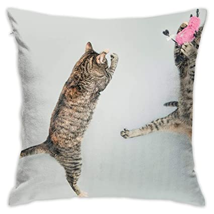 Amazon.com: Eratdatd Jumping-Cute-Playing-Animals ?Hold ...