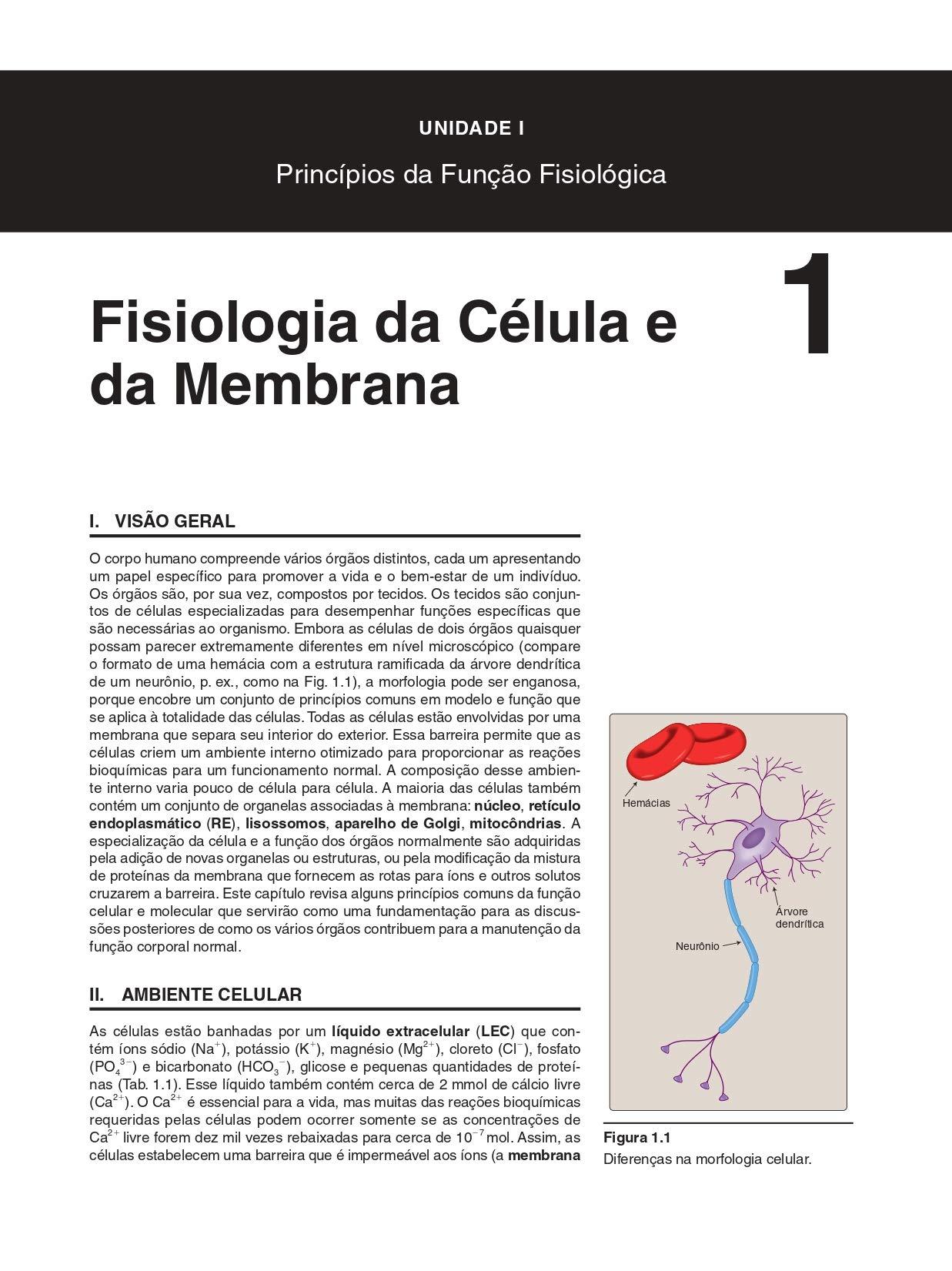 Fisiologia Ilustrada (Em Portuguese do Brasil): Amazon.es ...
