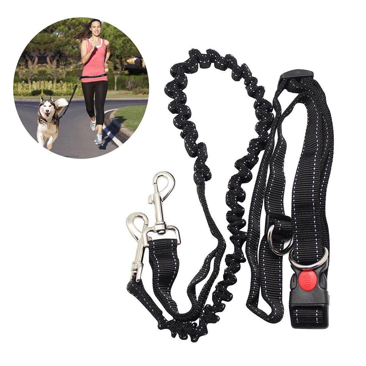 Mains libres laisse de chien laisse ceinture élastique avec sangle ventrale réglable pour faire du Jogging randonnée à pied, harnais pour chien élastique pour la course UEETEK