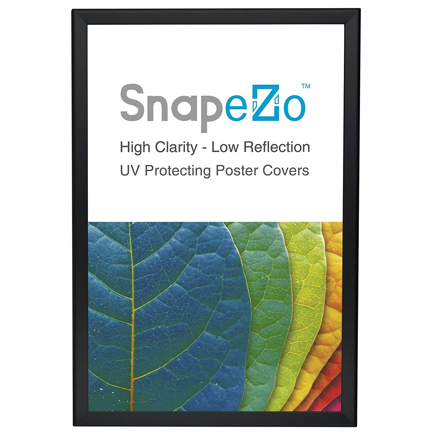 Amazon.com - SnapeZo Poster Frame 20x30 Inches, Black 1.25\