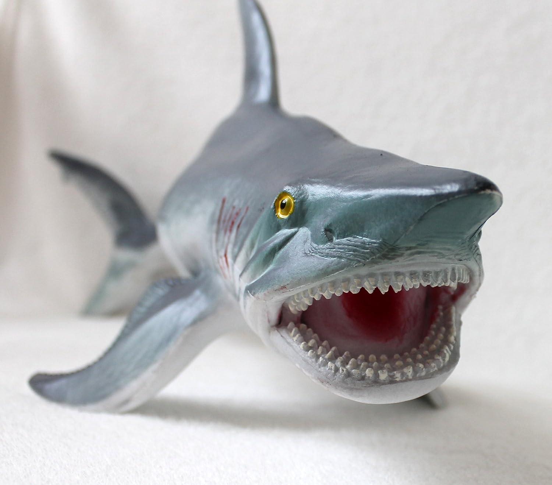 Erfreut Große Weiße Hai Färbung Seite Fotos - Framing Malvorlagen ...