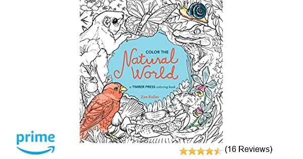 Counting Number worksheets math addition coloring worksheets : Color the Natural World: A Timber Press Coloring Book: Zoe Keller ...