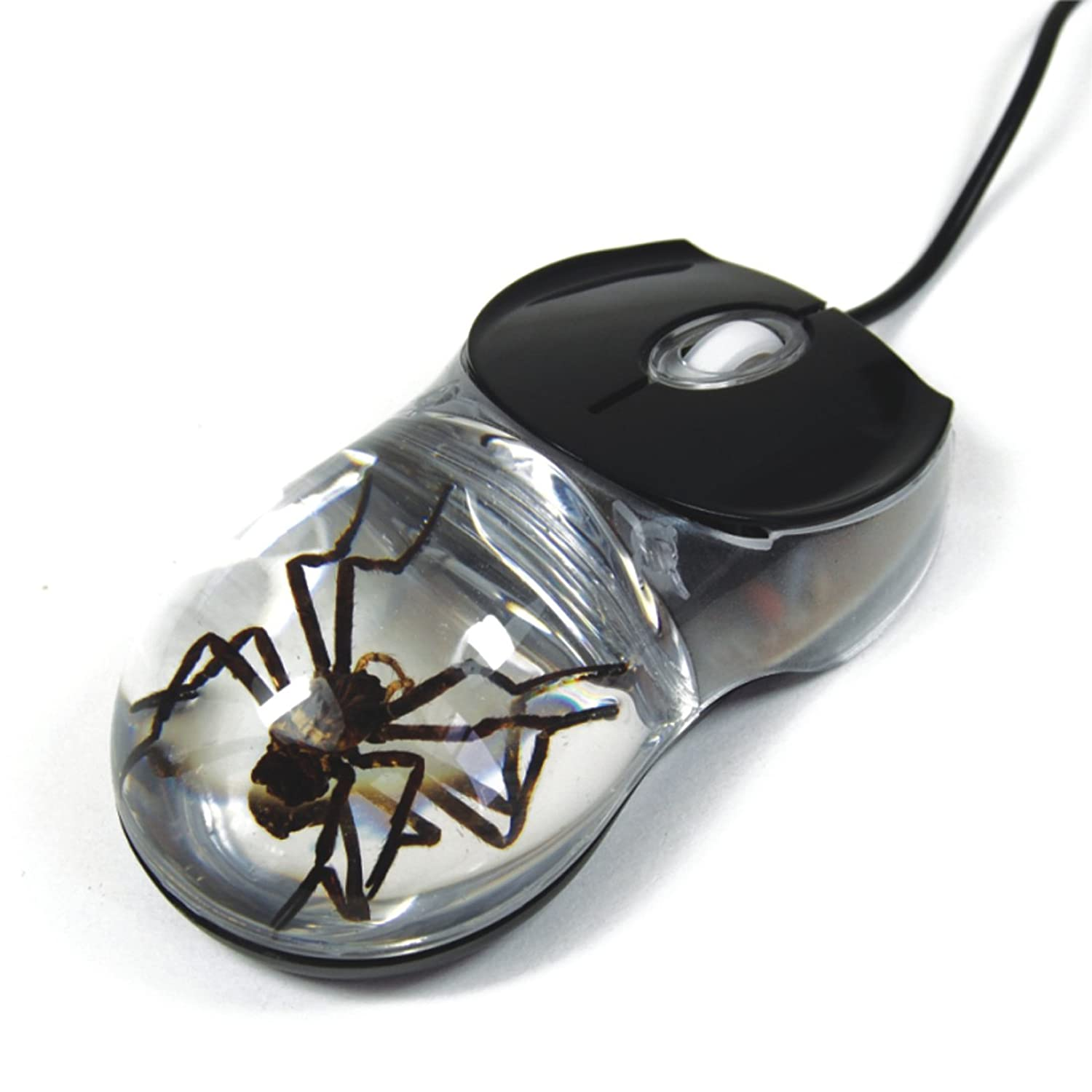 amazon com realbug spider computer mouse with clear background