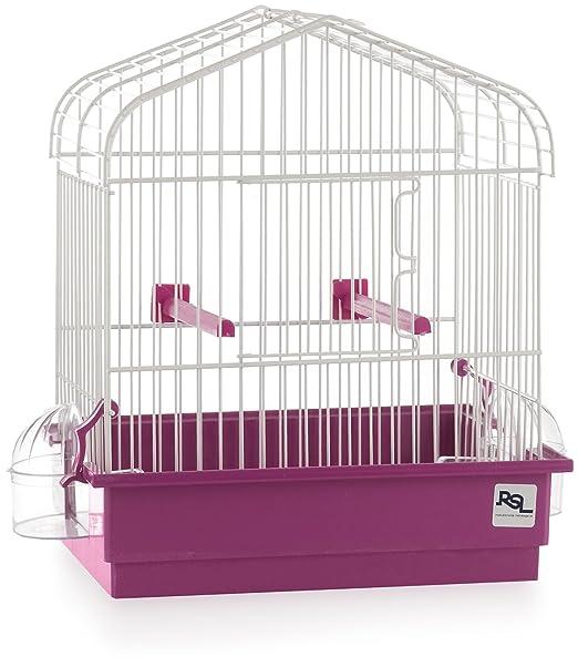 Jaula para Pájaros (tipo canario, periquitos...): Amazon.es: Jardín