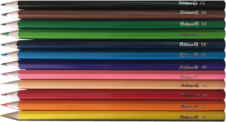 Pelikan 24004619 - Kit escolar completo, 35 piezas, pegamento, bolígrafos, lápices HB, lápices de colores, rotuladores de punta fina, sacapuntas, goma blanca, tijeras redondas, regla: Amazon.es: Oficina y papelería