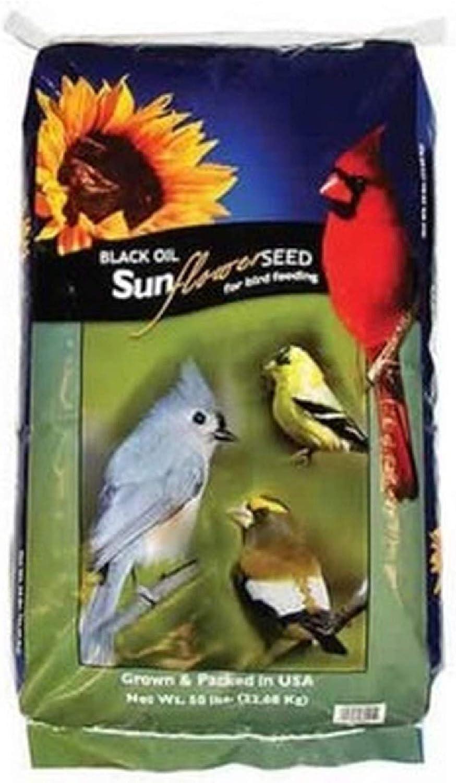 EasyGoProducts 40 Pound Black Oil Seed Bird Food, Brown (Blackseed-40)