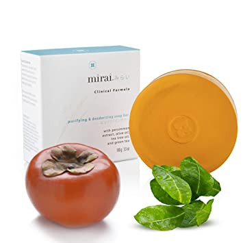Purifying & Deodorizing Soap Bar | Handmade Soap with Japanese Persimmon  Extract to Help with