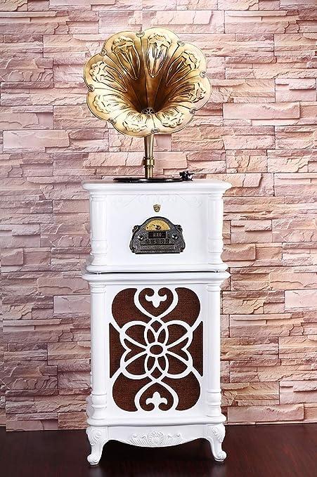 RAPLANC Disco de Vinilo de fonógrafo Retro decoración del hogar ...