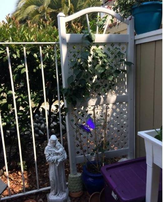 Jardín Arco Trellis Raised Garden – Set de celosía planta vegetal ...