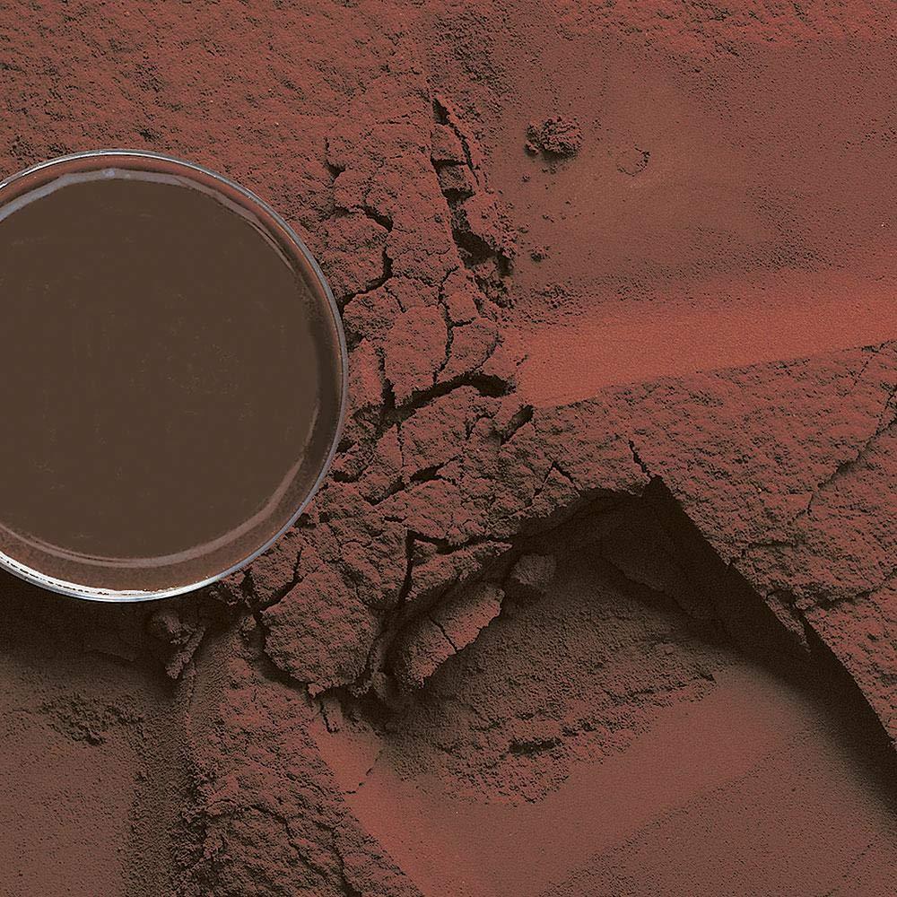 Barry Callebaut Ambler Premium Red Cocoa Powder | 10/12% Cocoa Powder | 50 lb Bag