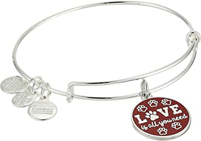 Alex and Ani Words are Powerful, Love is All You Need, Expandable Charm Bracelet, Shiny Silver-Tone