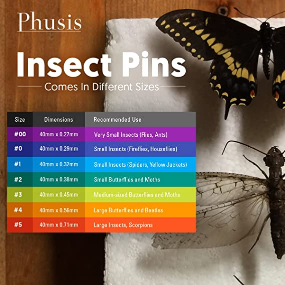 Lab Dissection and Specimen Collection Pins Stainless Steel Specimen Insect Pins with epoxy Resin Head for Entomology