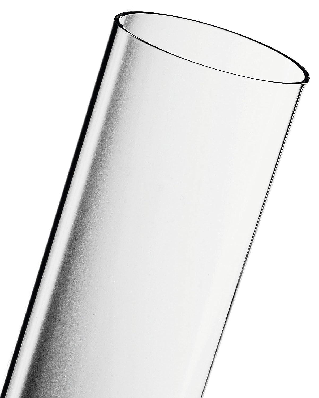 ACTIVA Duran Schott - Tubo de vidrio para estufa de gas de exterior Pyramide Cheops, transparente: Amazon.es: Jardín
