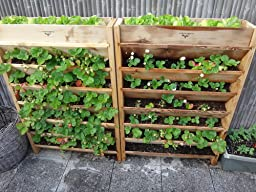 Amazoncom Gronomics VG3245 Vertical Garden Planter 32 Inch by