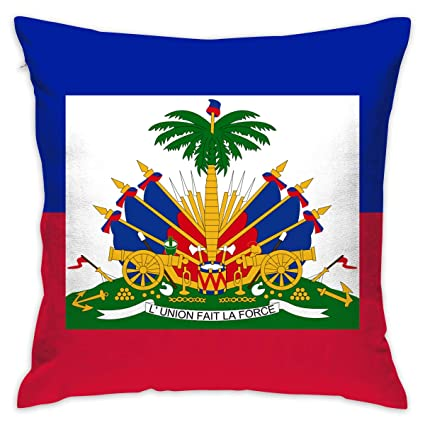 Amazon.com: CCGGJPYI Haitian Flag Decorative Throw Pillow ...