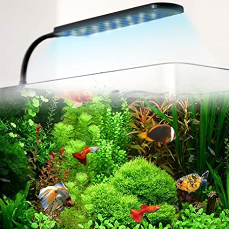 G de Lighting® 3 W 48leds (36weiße + 12 LED Azul) Acuario Pinza