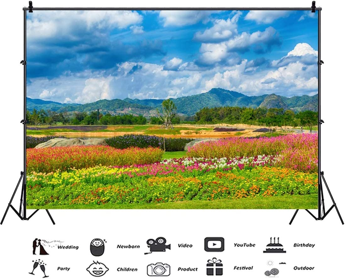 Yeele 10x8ft Spring Photography Background Green Lawn Colorful Landscape Formal Garden Sunshine Mountain Range Blue Sky and White Cloud Party Decoration Photo Backdrop Adults Portrait