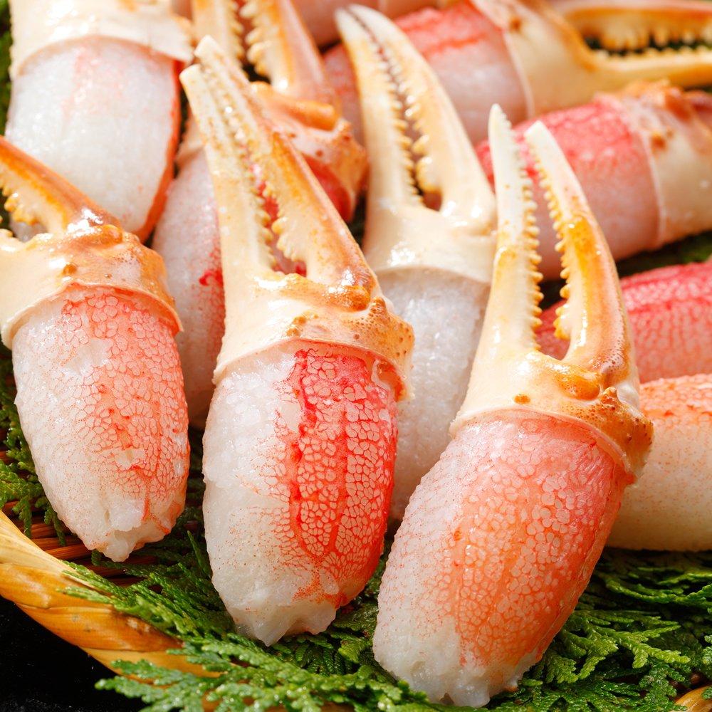 札幌蟹販 6L生冷ズワイガニ カニ爪 1.0kg (21~30個入・加熱用)