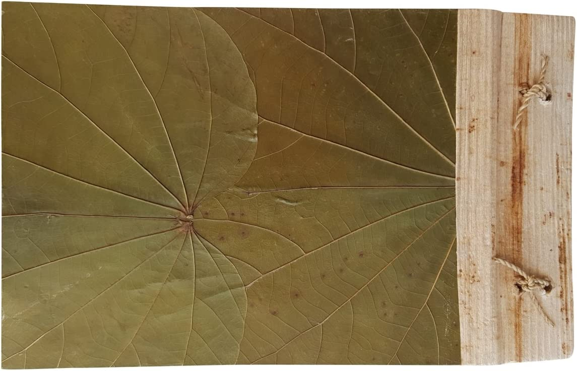 5182 Natural Brown Leaves with Green Landscape Style Handmade Photo Album 9 by 4 Holds 20 4x6 photos