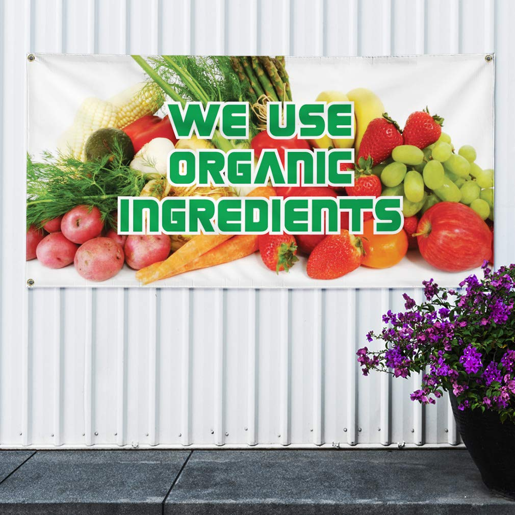 Vinyl Banner Multiple Sizes Check Cashing Blue Red Business Outdoor Weatherproof Industrial Yard Signs 8 Grommets 48x96Inches