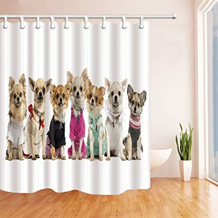 GoHeBe Dogs Decor Cute Puppy With Creative Clothes Shower Curtains Polyester Fabric Waterproof Bath Curtain 71X71in
