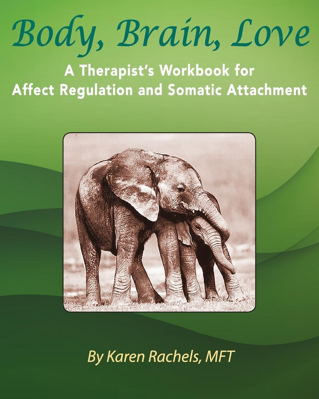 Body, Brain, Love: A Therapist's Workbook for Affect Regulation and Somatic Attachment PDF