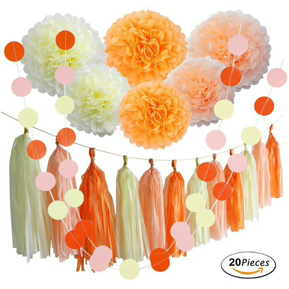 20 Pcs Summer Sunny Day Hangings Wedding Favors Decorations Kit with Tissue Flowers Tassel Hangings and Citcle Dots Garlands Baby Shower Birthday Party Decorations