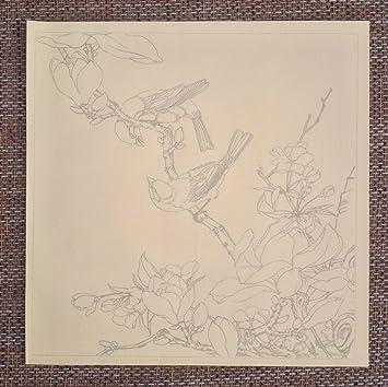 Chinese Realistische Painting Flower Bird Line Zeichnen Manuscript
