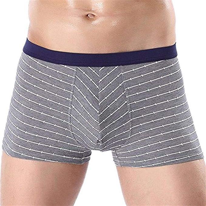 Algodón para Hombres Boxer Clásico Pantalones Algodón Cortos Modernas Casual Debajo Mantener Cálidos Calzoncillos Bañadores Deportivos Raya Cómoda Cómodo Y Transpirable 5 Pares: Amazon.es: Ropa y accesorios