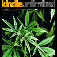 Cannabis - culture générale de la marijuana (French Edition)