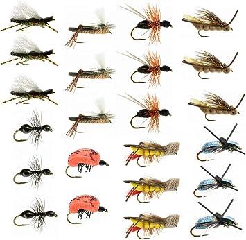 Terrestrial trucha pesca con mosca moscas Collection: 23 moscas + caja para moscas de pesca: Amazon.es: Deportes y aire libre