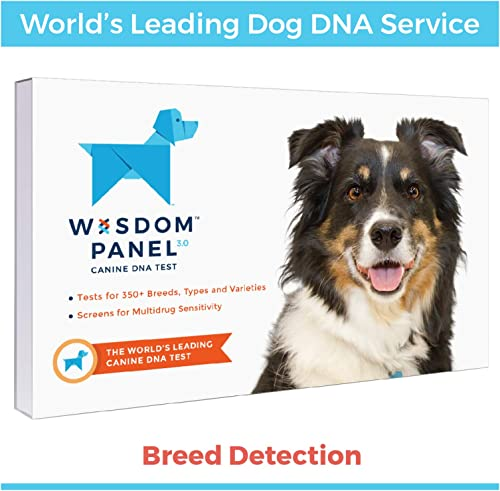dna testing reviews consumer report
