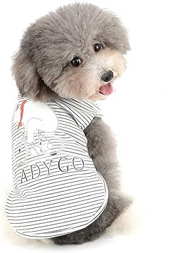 Migliori 7 Magliette per cani