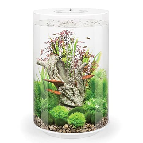 BiOrb - Acuario tubular blanco con luz LED multicolor remota, 30 L