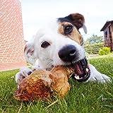 kauwurzeln el La Duración kauspielzeug kauwurzel para perros perro esquirlas No sin ningún aditivos No tienen Burned son hipoalergénicas el Natural Perros juguete kauknochen
