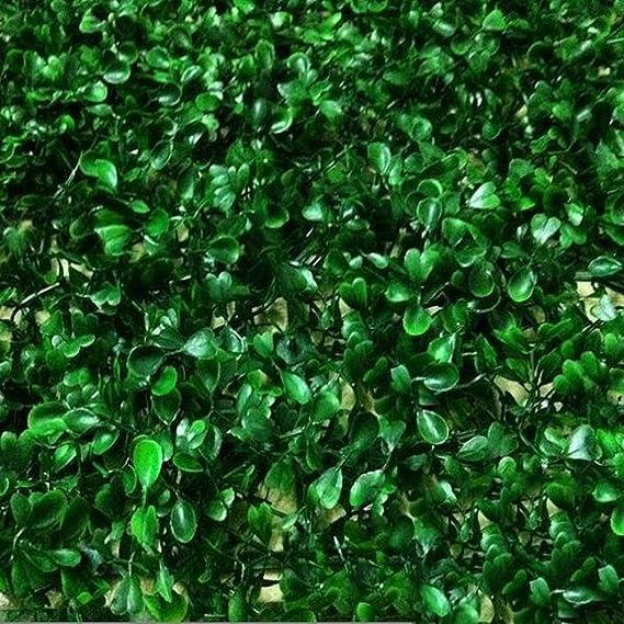 WEWE Muro De Pantalla De Jardín Artificial,4mm Planta Pared Decoración Césped Cercas Decorativas Se Pueden Utilizar para La Decoración Paisajismo Ventana Oficina-Verde 40x60cm(15.7x23.6inch): Amazon.es: Jardín
